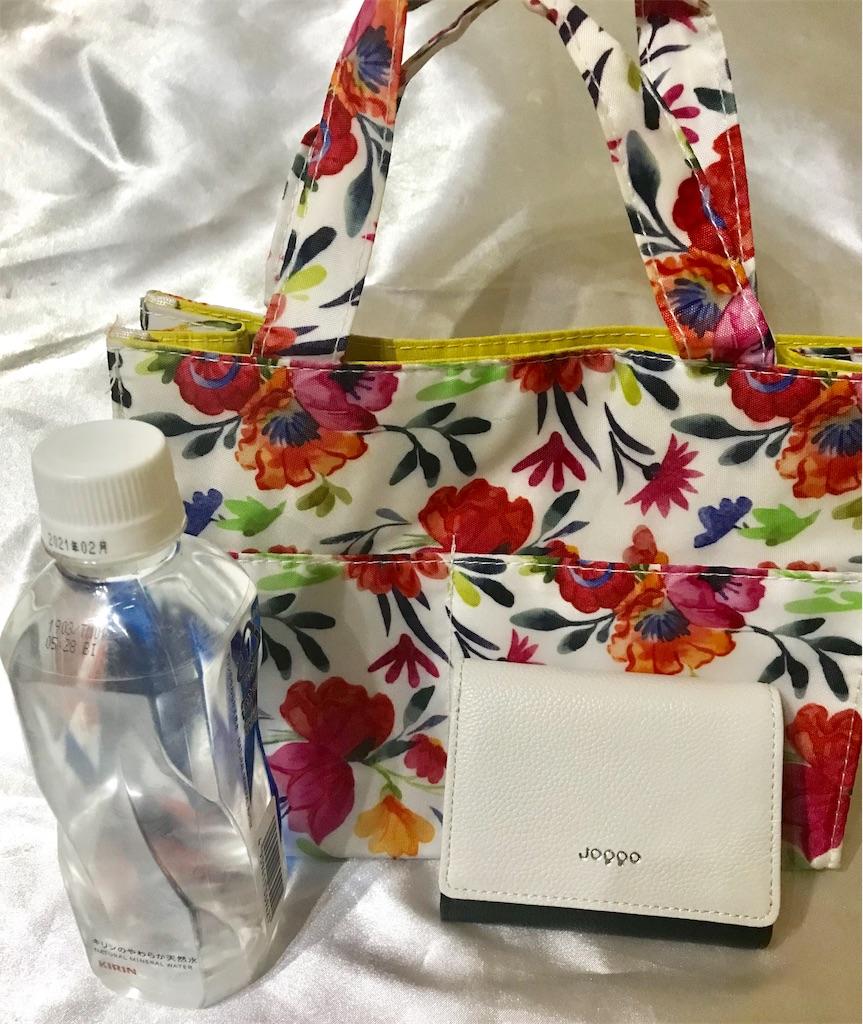 小ぶりのバッグと財布